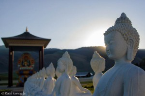 All 1,008 Buddhas were cast in concrete, on site