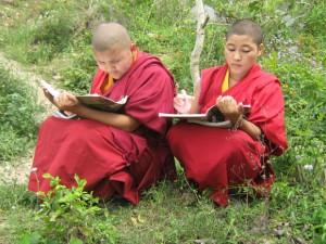 Nuns study