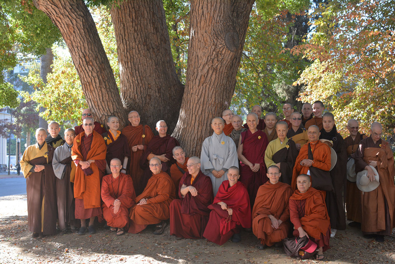 This is a photo of all the nuns attending the gathering this year, far more than the monks