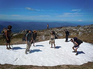Snow field at Mt. Hood