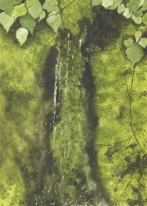 A calming still life-from-nature with finely rendered leaves and a massing of amorphous, water-saturated moss
