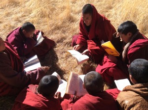 Shedra monks studying outside