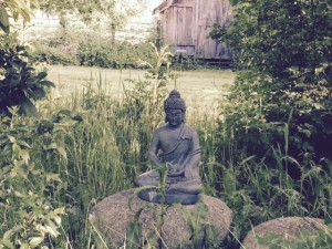 A welcoming Buddha, on the Monroe land