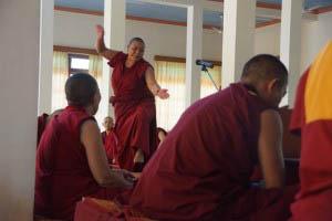 Tibetan Nun Project