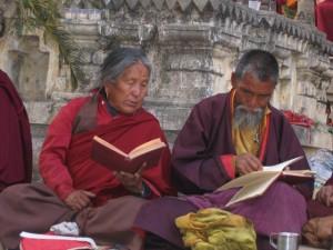Studious pilgrims, Bodhgaya, India