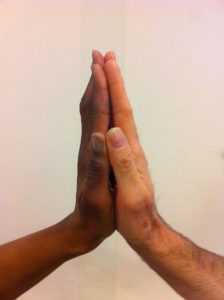Two hands, symbolizing human unity despite differences.