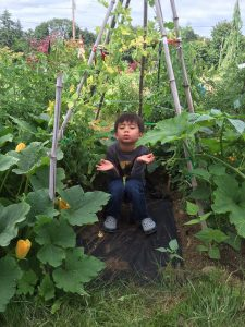 A young boy Buddha in the vegetable garden.