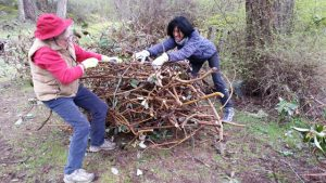 Kira Sewell, Sakya Society vice president, and Jennifer Harrington, volunteer, clearing brush for the chipping pile in April 2017.