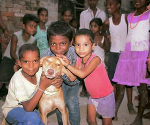 Helping children love animals more