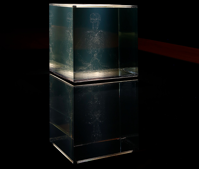 This sculpture of the Panchen Lama's cardiovascular system, rendered in Pyrex, is visible and invisible depending on the angle