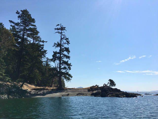 San Juan Island and the Salish Sea provide a beautiful setting for dharma activity