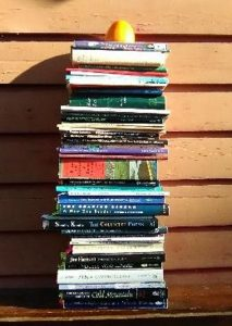 A stack of poetry books outside Tenzing's home, which he will explore for poems on Dharma themes. A persimmon rests on top